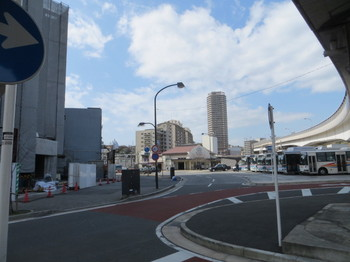 横須賀駅・16号家・マンサク 001.JPG