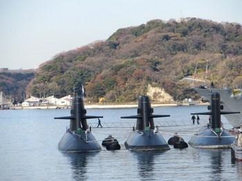 潜水艦・ボナフェ木 001.JPG